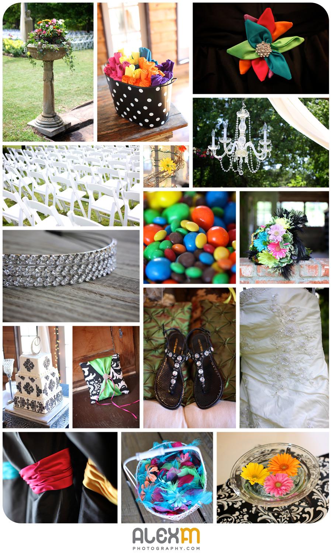 Kasey & Chad | Elmwood Gardens (Part 2)