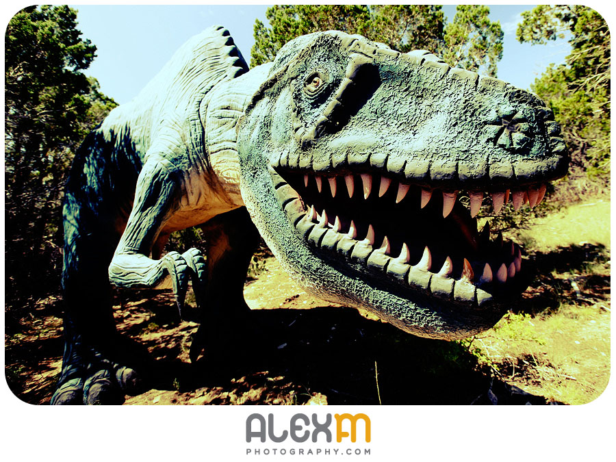 4330Dinosaurs And Your Wedding