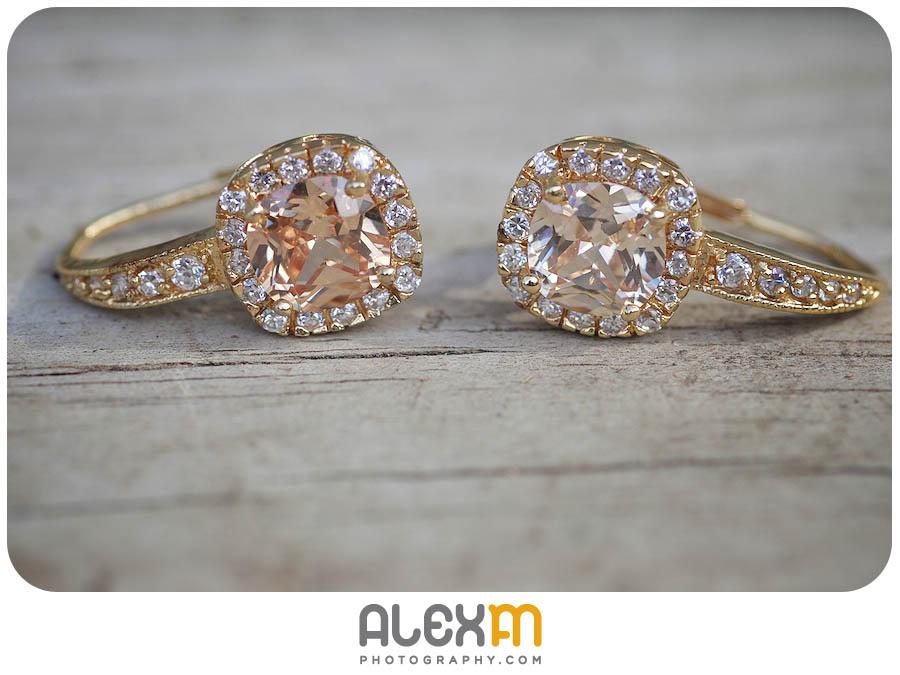 4643Jessica & Rob | Wedding Photography Elmwood Gardens