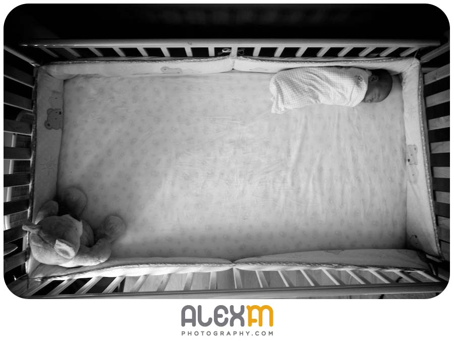 photography palestine tx