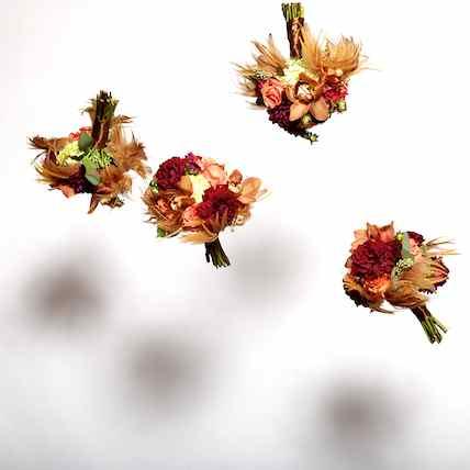 http://www.alexmphotography.com/_wp_site/wp-content/uploads/2013/06/mug-home-004.jpg