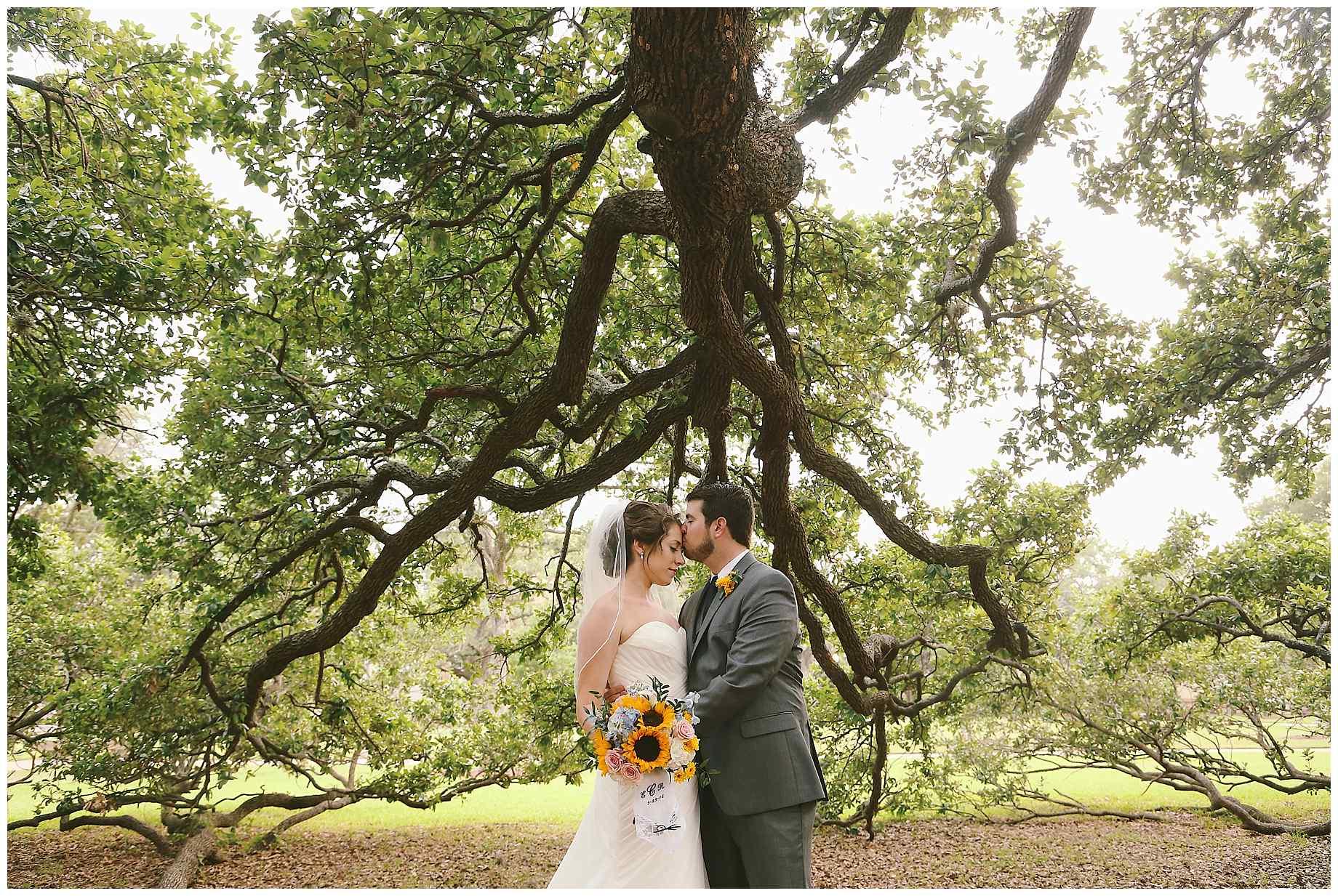 aggie-century-tree-wedding-23