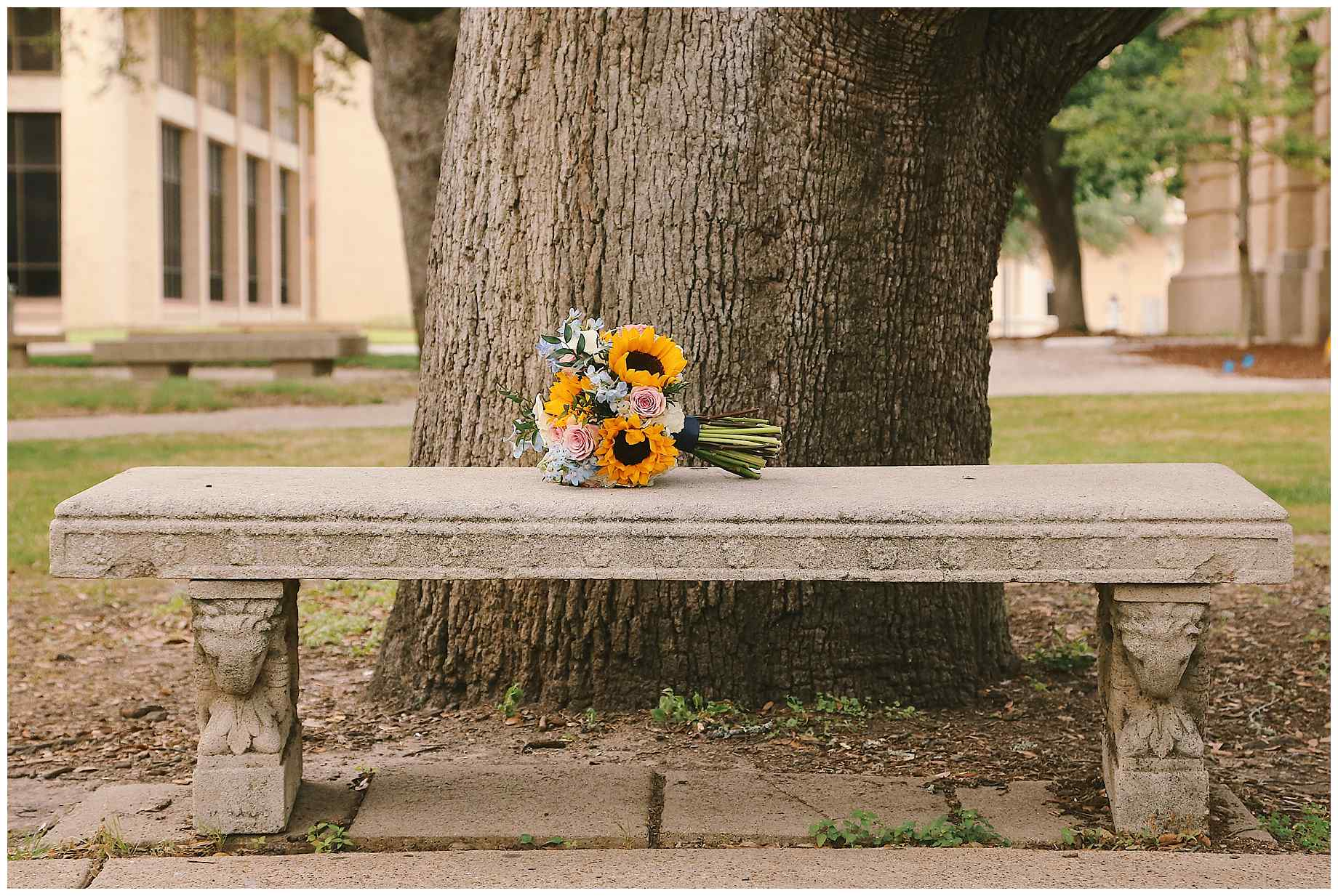 aggie-century-tree-wedding-24