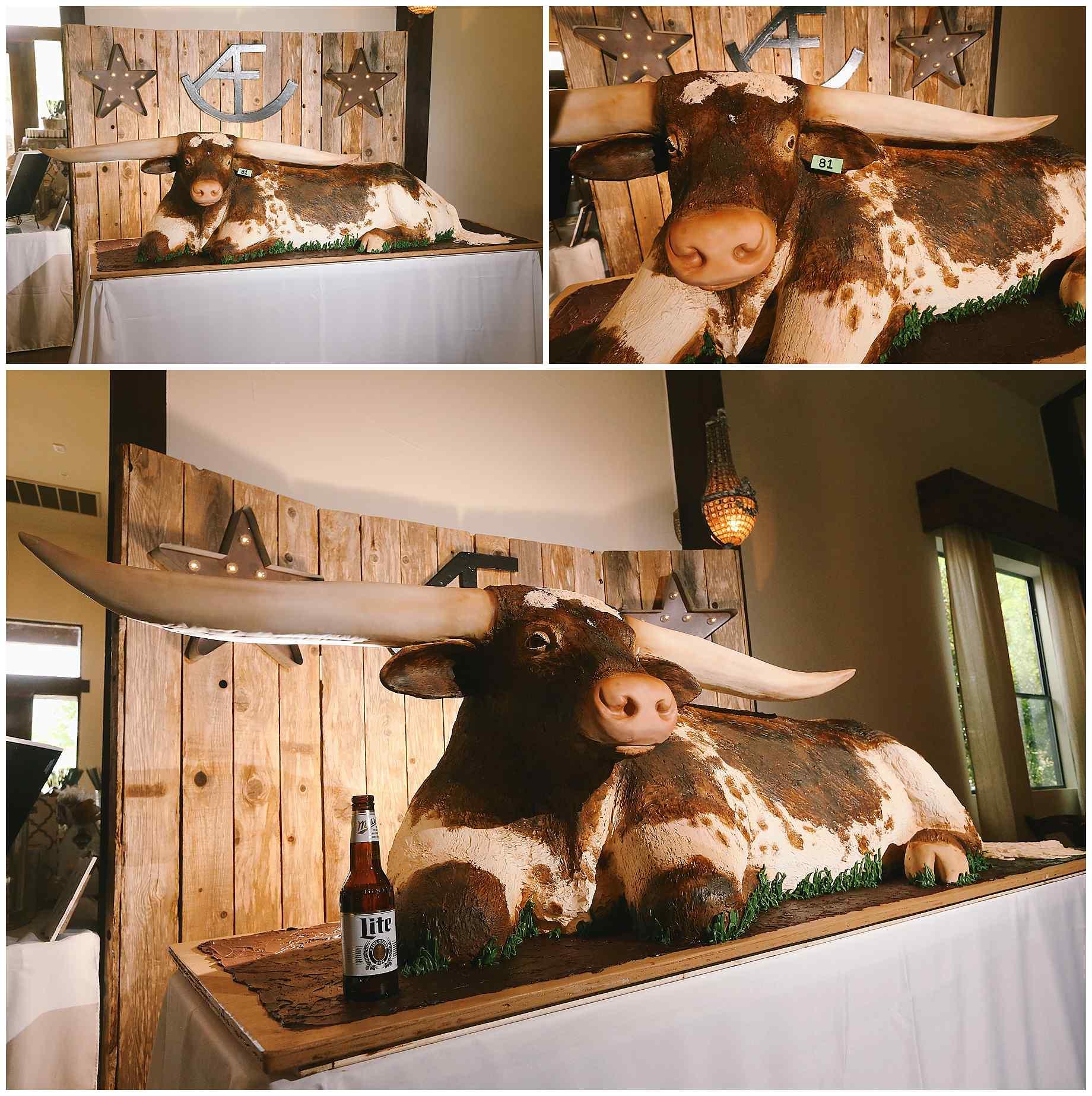 pecan-springs-ranch-austin-tx-wedding-018