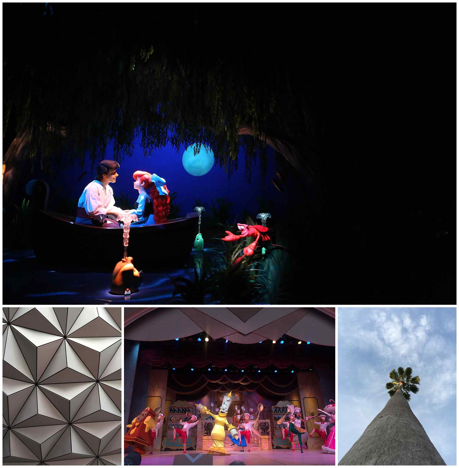 Disney-World-2015-021