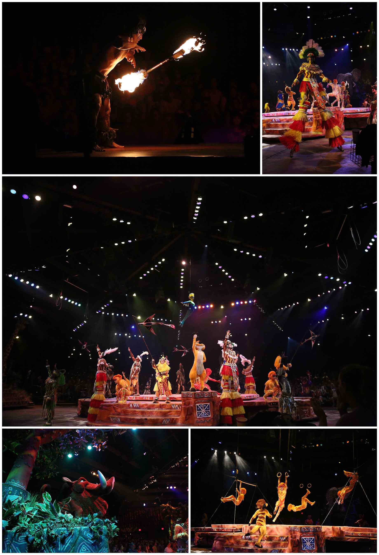 Disney-World-2015-050