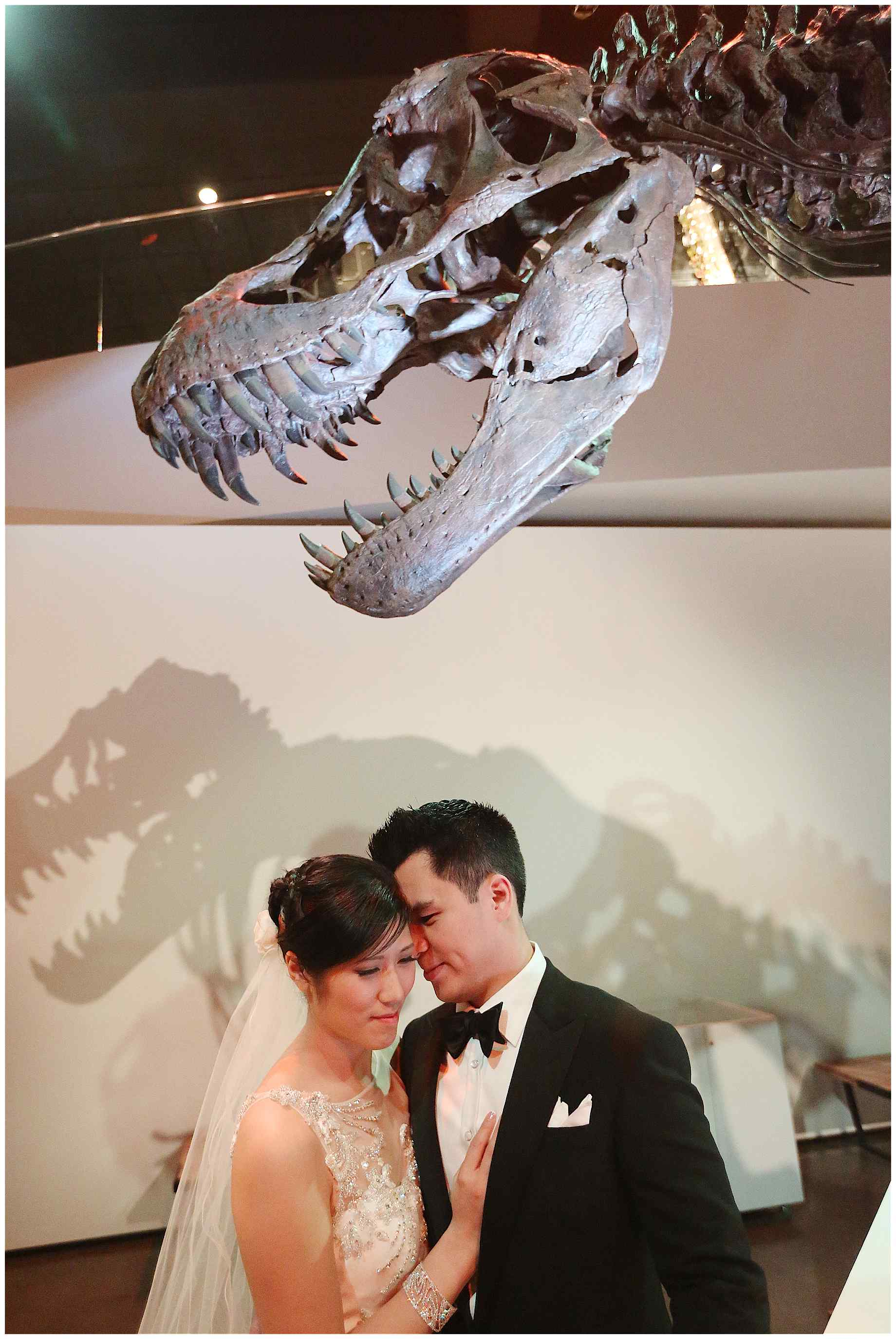 houston-museum-of-natural-science-wedding-photos-011