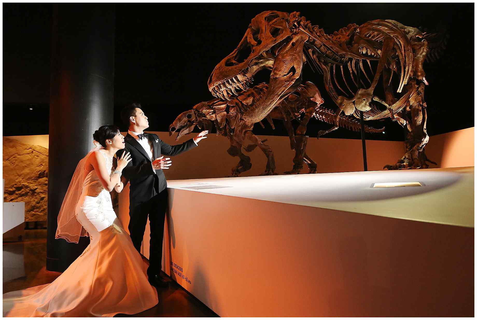 houston-museum-of-natural-science-wedding-photos-012