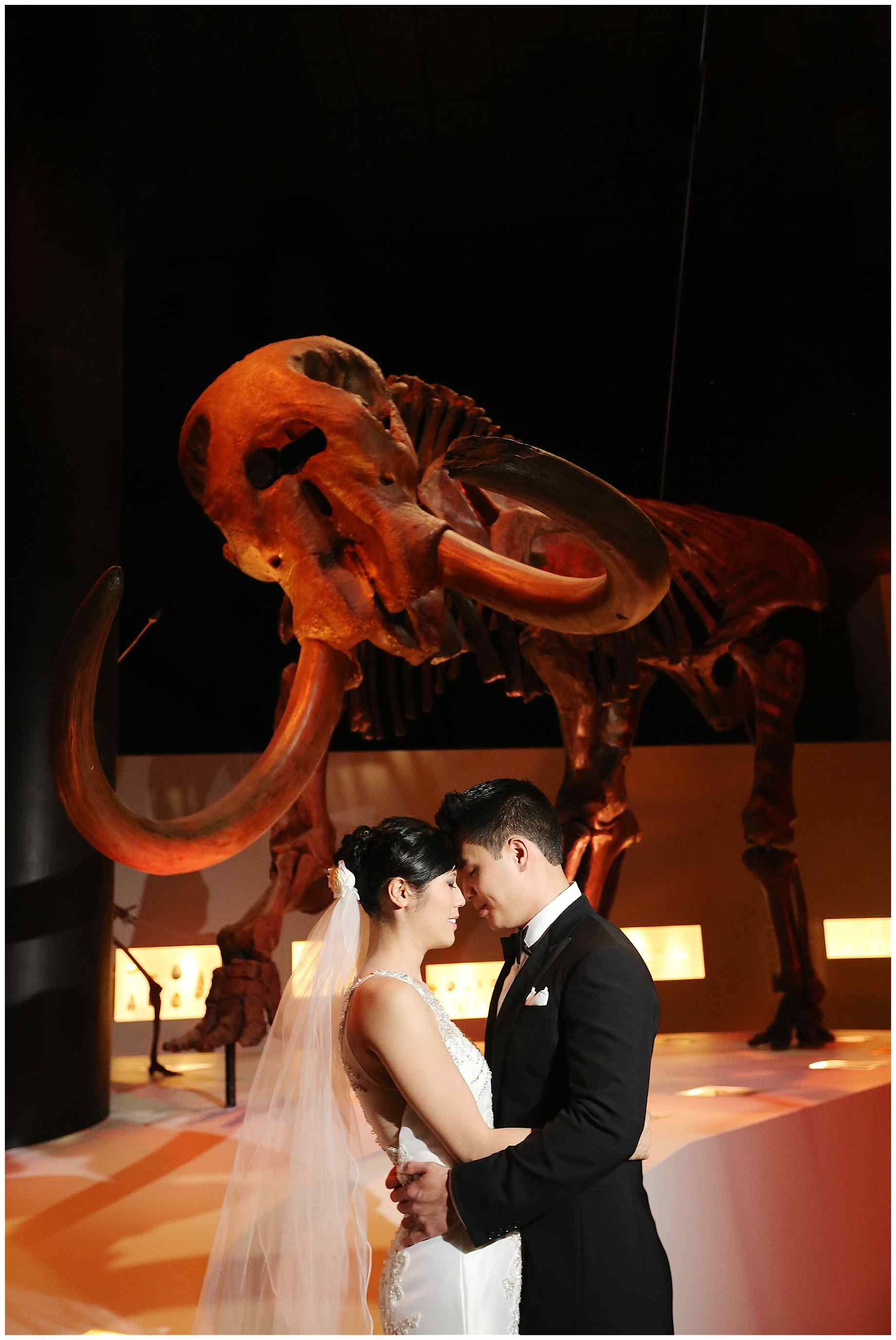 houston-museum-of-natural-science-wedding-photos-013