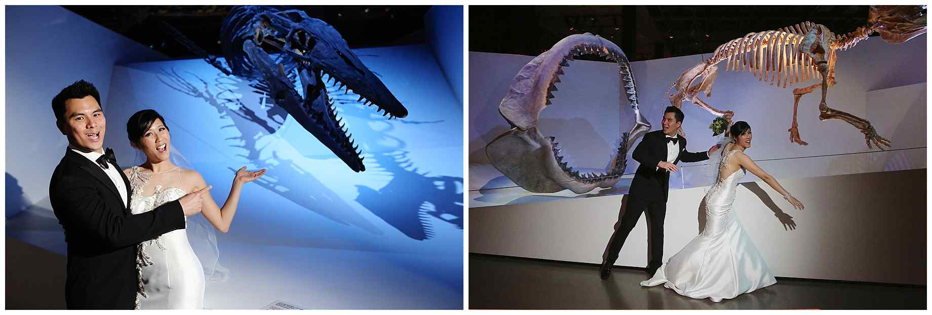 houston-museum-of-natural-science-wedding-photos-014