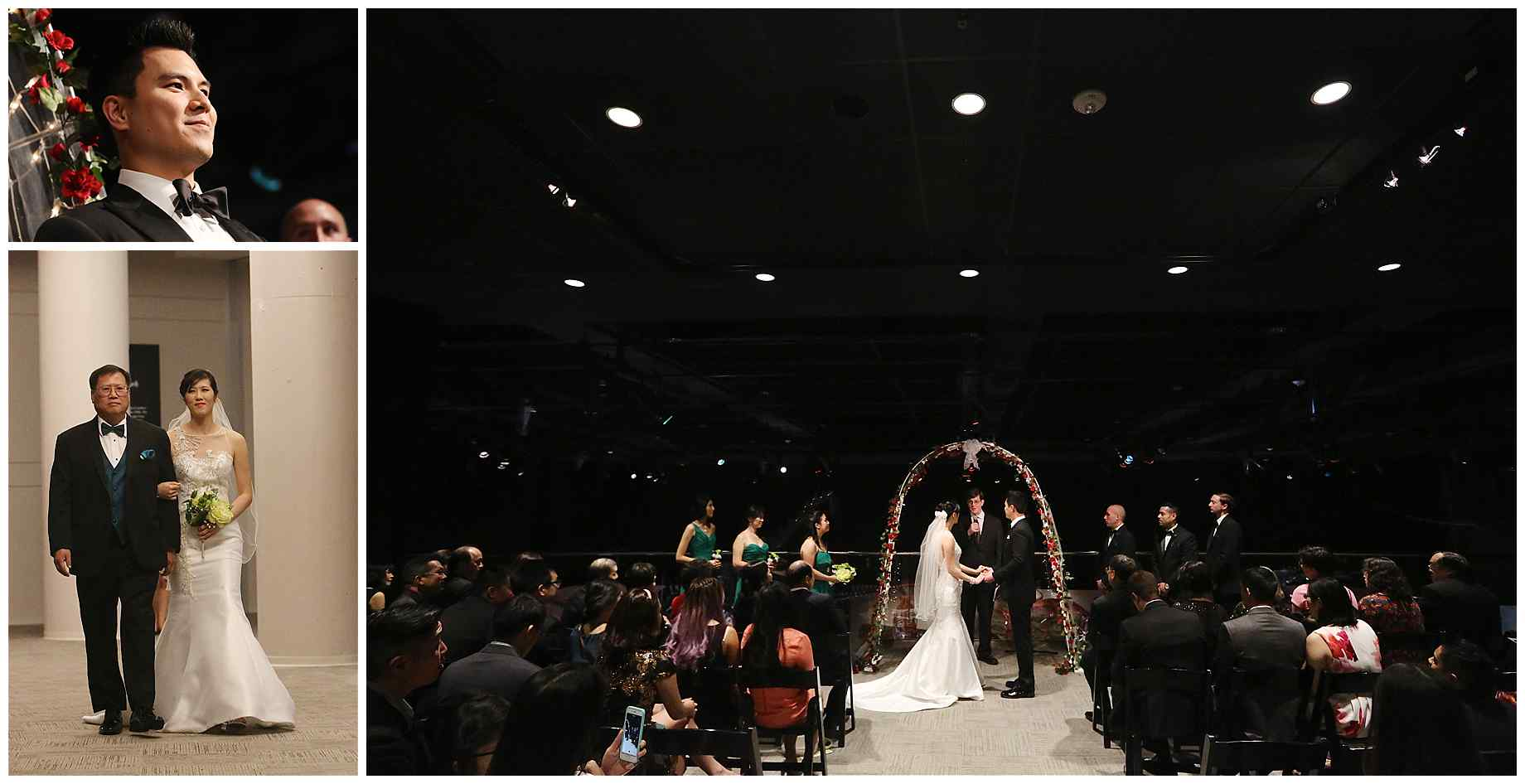 houston-museum-of-natural-science-wedding-photos-019