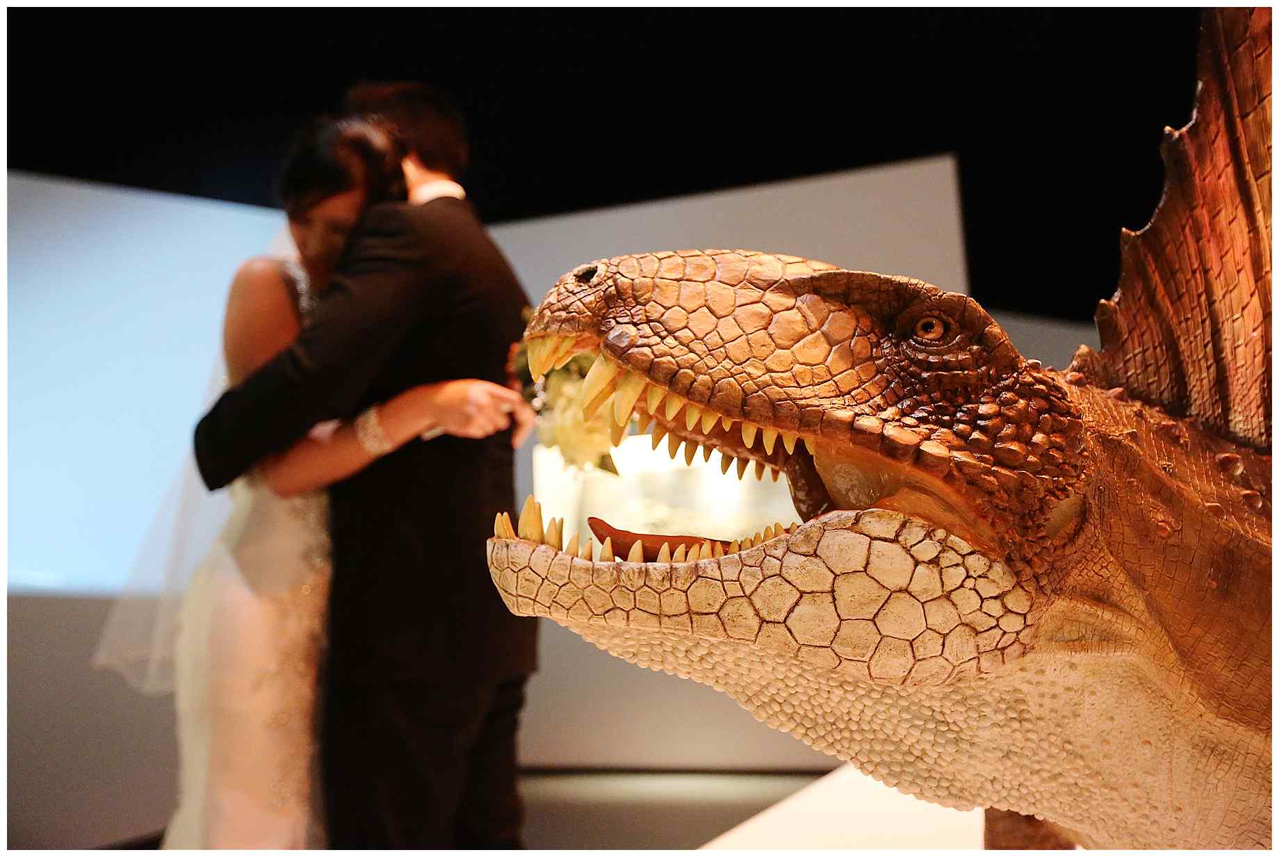 houston-museum-of-natural-science-wedding-photos-023