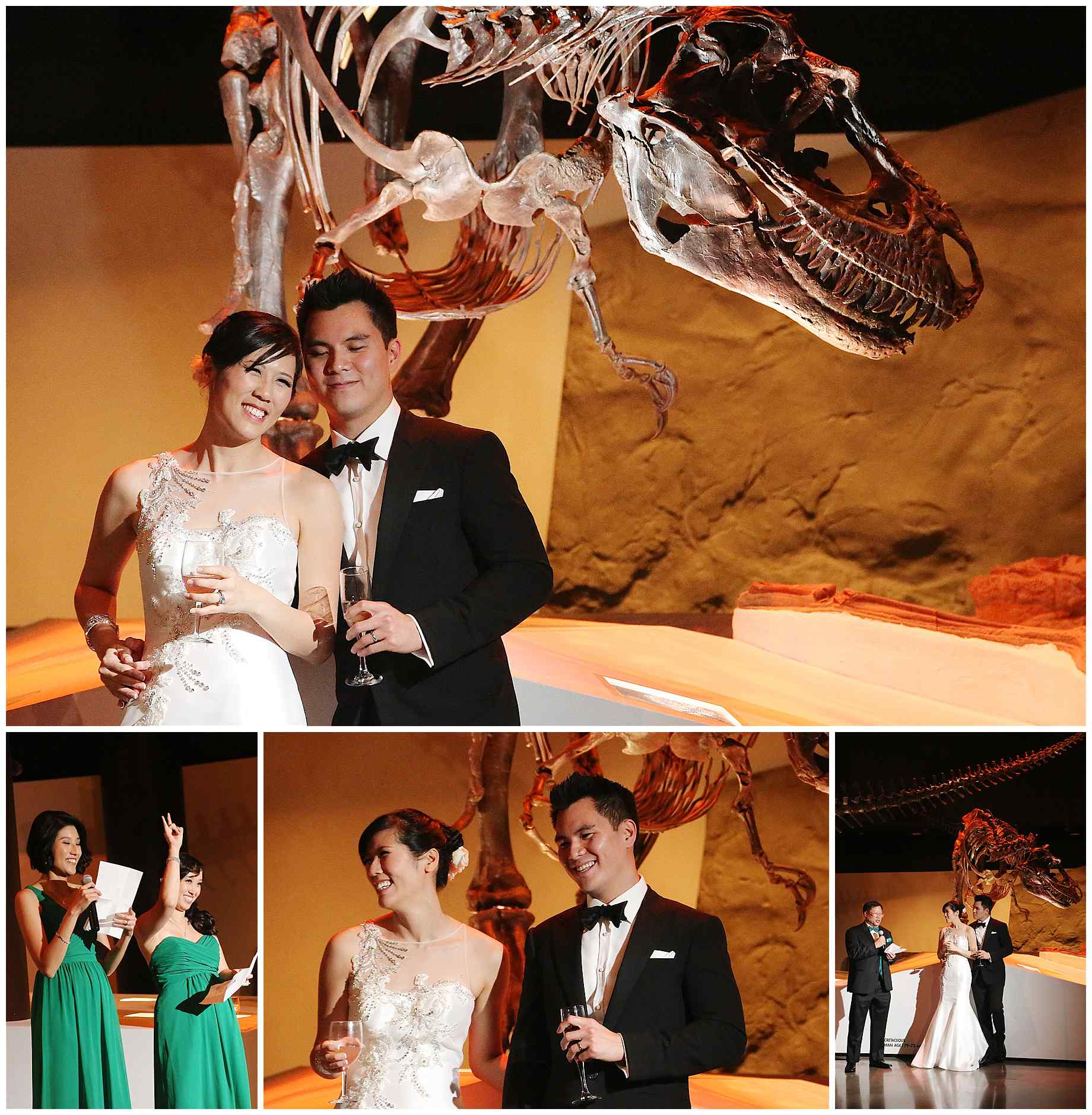 houston-museum-of-natural-science-wedding-photos-026