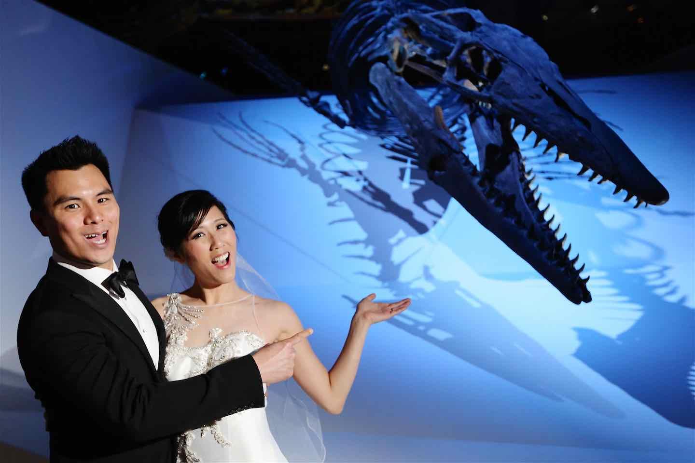 Dino-mite Love