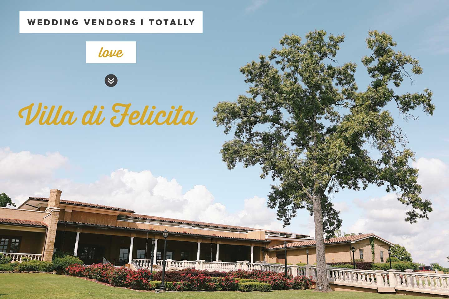 Vendor Love: Villa di Felicita